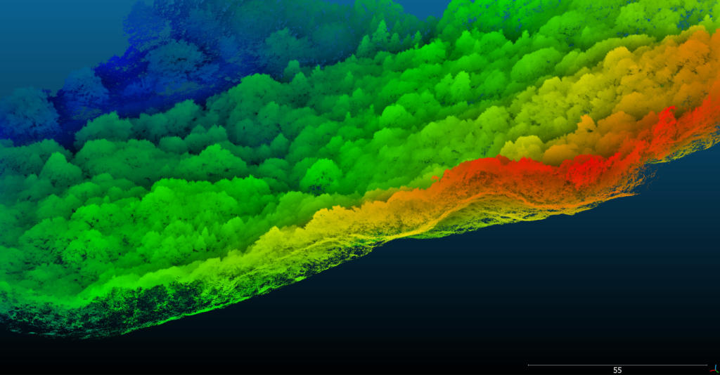 Nextcore RN50 LiDAR scan of a forest canopy