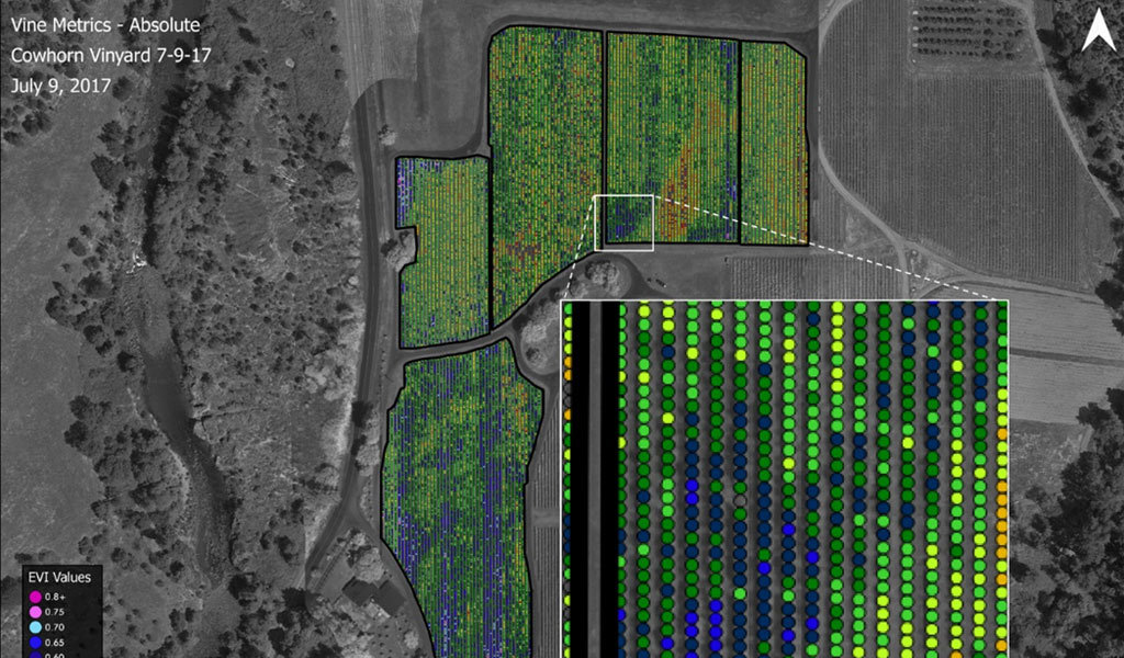 Commercial drones scan vineyards to provide EVI values