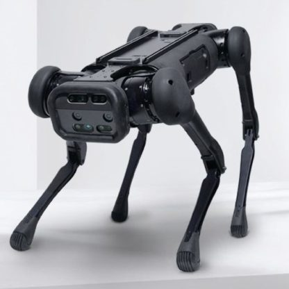 Aliengo quadruped robot