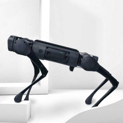 Aliengo robot dog from Unitree Robotics