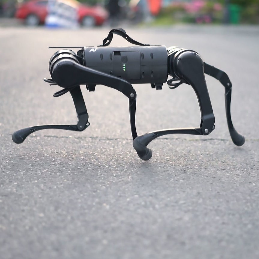 Unitree quadruped robots