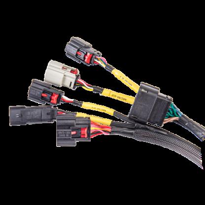Sygnal plug and play wiring harness
