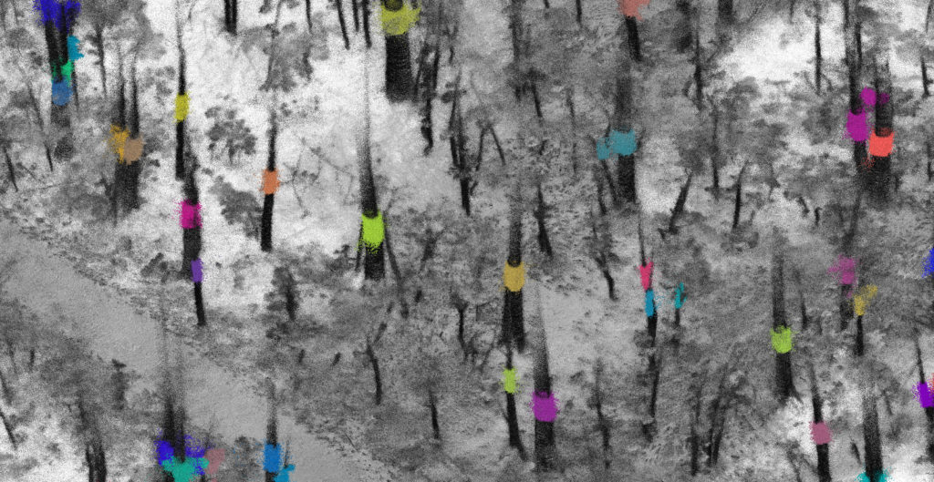localization maps tracking individual trees